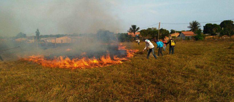 Corpo de Bombeiros treina voluntários para combater incêndios florestais