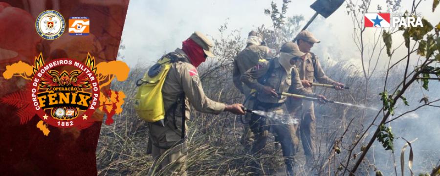 Corpo de Bombeiros continua combatendo queimadas em Altamira