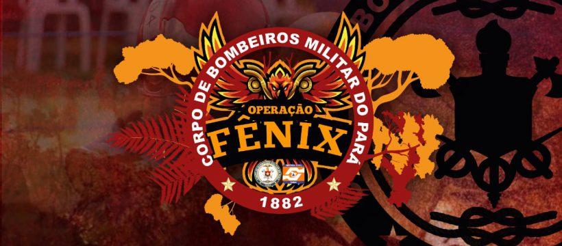Operação Fênix integra órgãos estaduais e federais para o combate a incêndios florestais
