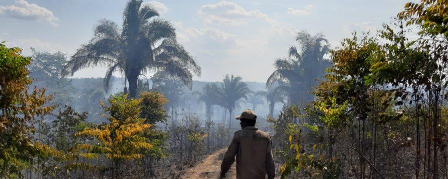 Corpo de Bombeiros segue combatendo queimadas em Marabá