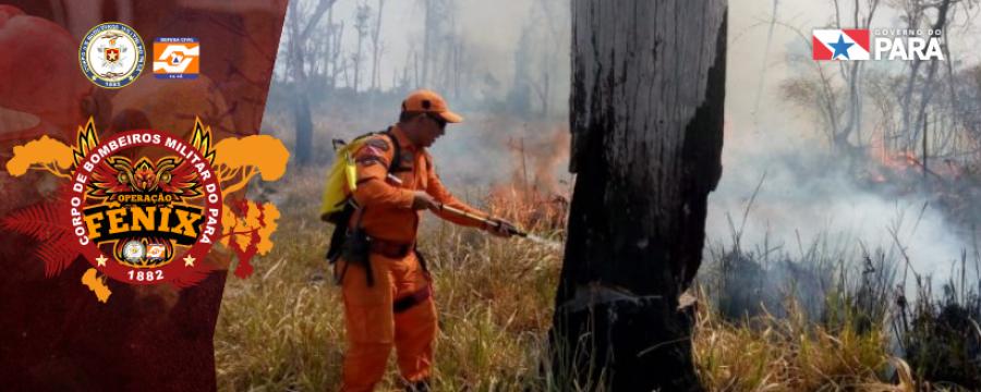Operação Fênix: Corpo de Bombeiros continua atuando em São Félix do Xingu
