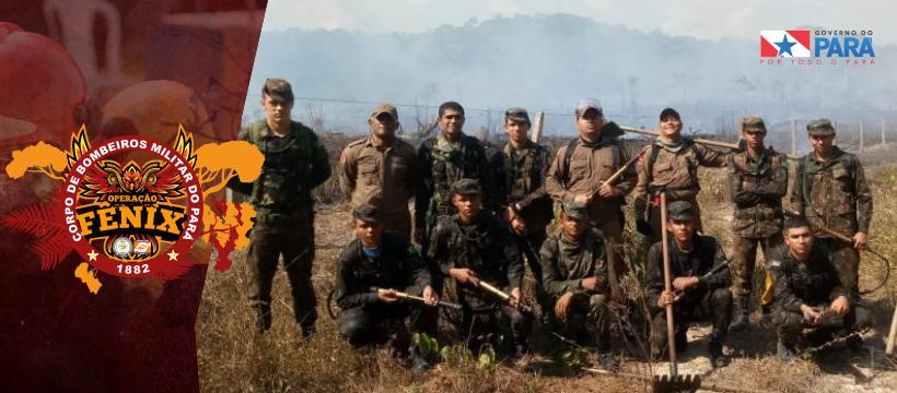 Operação Fênix segue combatendo queimadas em Novo Progresso e Marabá