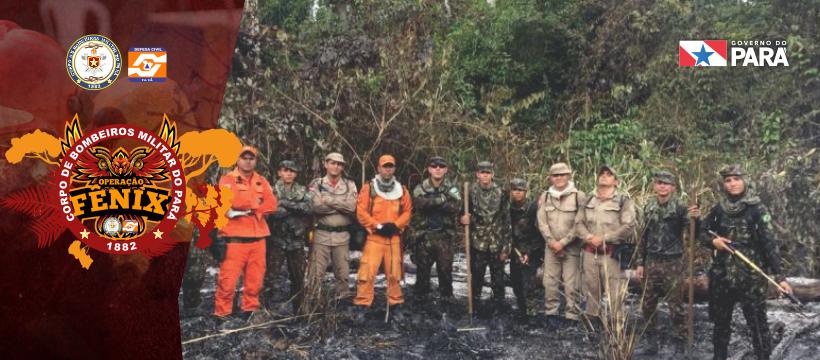 Operação Fênix: reconhecimento de focos de incêndio em Novo Progresso