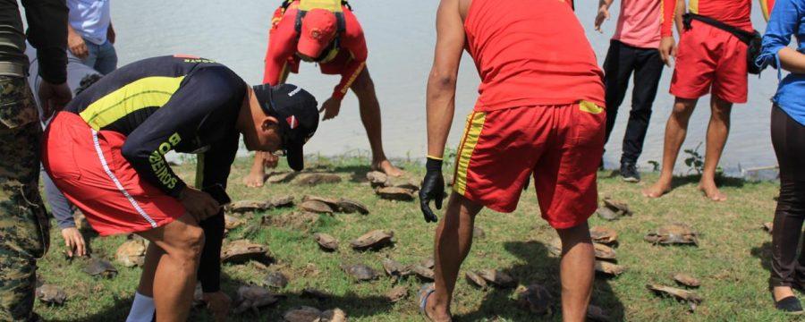 Corpo de Bombeiros participa de ação ambiental que reintroduziu 102 animais silvestres à natureza