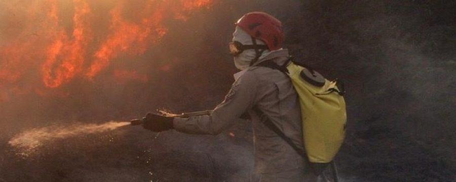 OPERAÇÃO FÊNIX 2020: BOMBEIROS SEGUEM COMBATENDO INCÊNDIOS FLORESTAIS E QUEIMADAS NO INTERIOR DO ESTADO